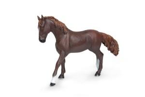 Horses & Foals