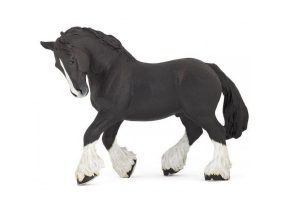 BLACK-SHIRE-HORSE-51517.jpg