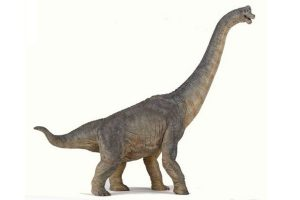 LONG-NECK-BRACHIOUSAURUS-55030.jpg