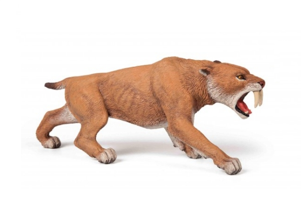 Smilodon The Sabretooth Tiger The Toy Factory