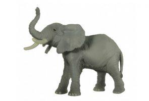 TRUMPETING-ELEPHANT-50041.jpg