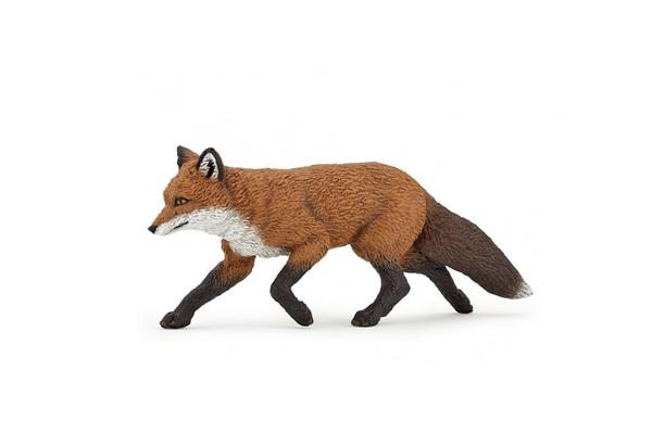 RED-FOX-53020.jpg