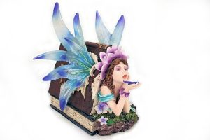 Y-FAIRY-IN-BOOK-NP685E-5495.jpg
