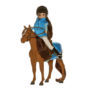 lt078-sirius-the-welsh-mountain-pony-with-lottie